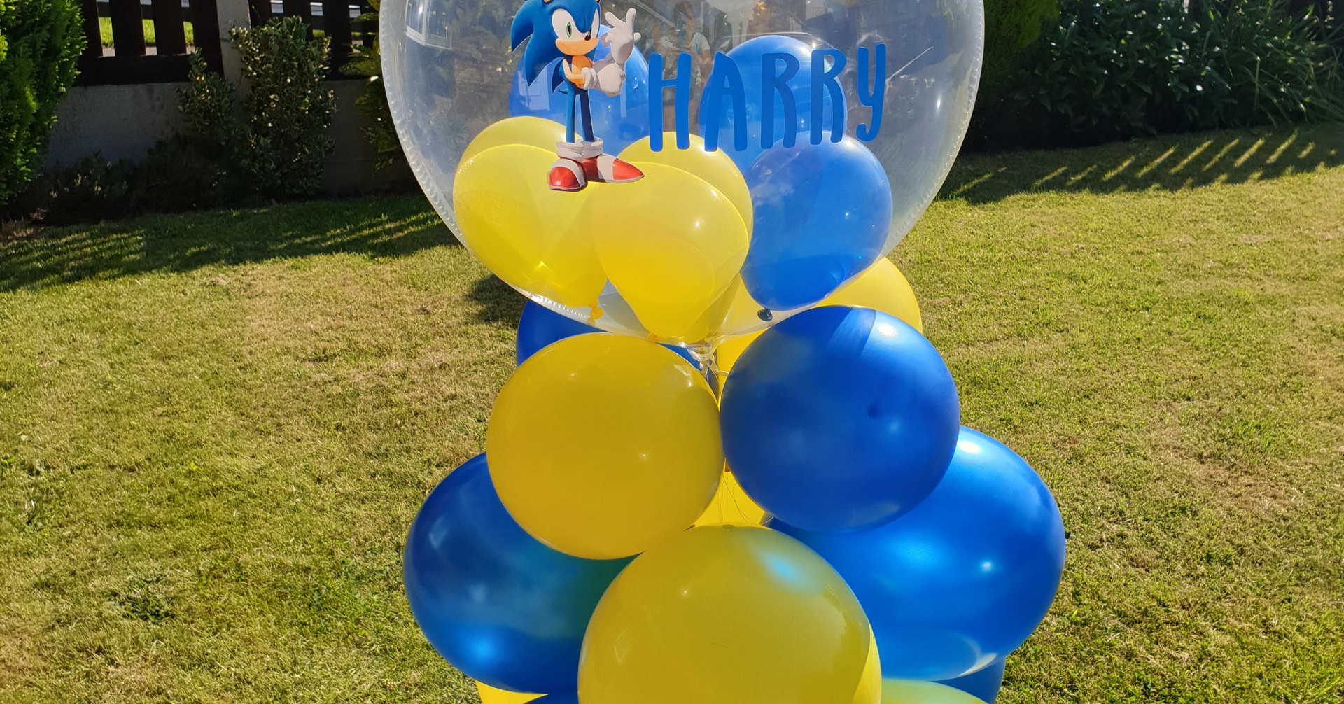 Sonic the hedgehodge bubble column