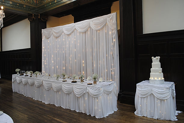 Twinkle backdrop and table skirts