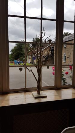 Rustic Manzanita Tree
