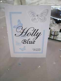 Flutter Butterfly Table Name