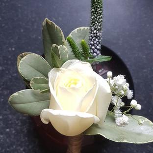 Fresh Ivory rose & veronice buttonhole