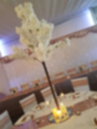 Ivory pink 1.4m blossom tree