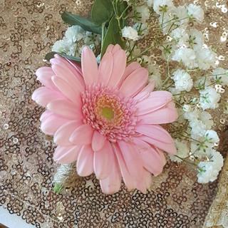 Pink gerbera & gyp buttohole