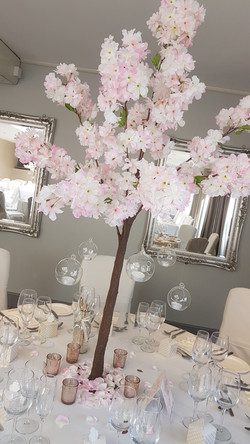 Blush Pink Blossom Tree