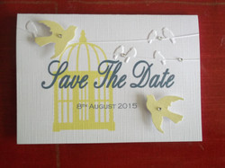 Birdcage Save The Date