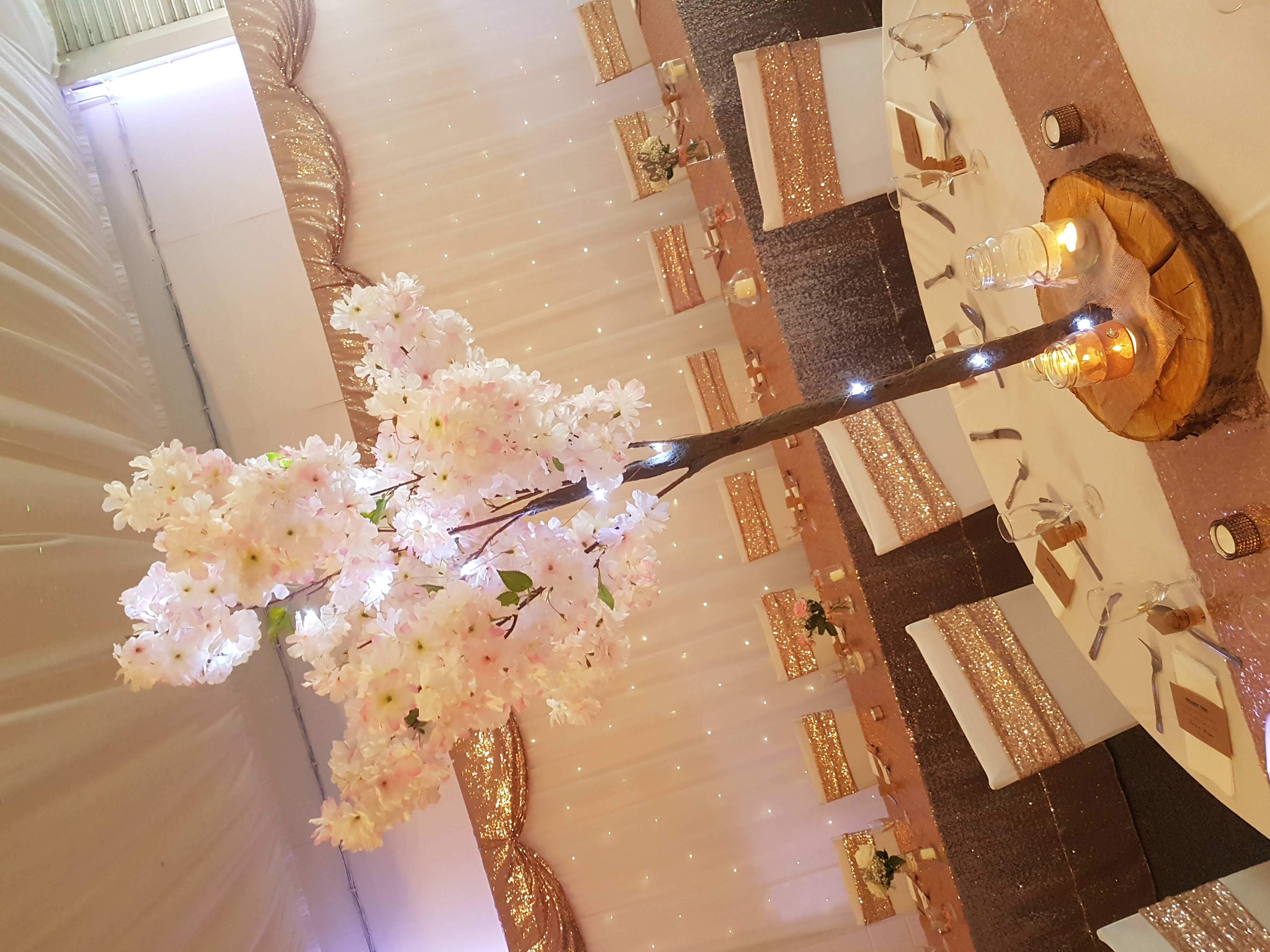 Blush Pink Deluxe Blossom Tree