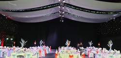 White Ceiling Swags with Ice White Lights