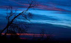 Topanga Canyon Sunrise (blue).jpg