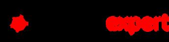 REX Logo PNG.png