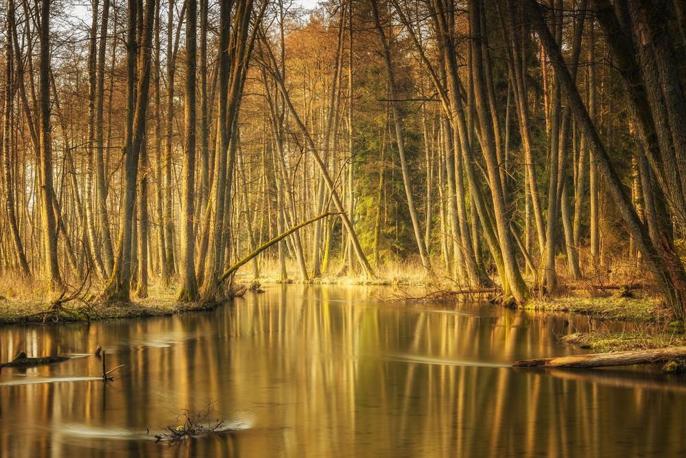 Rzeka Marózka.jpg