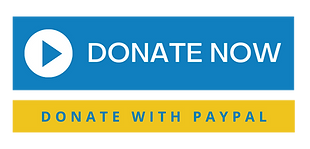 Donate with PayPal.png