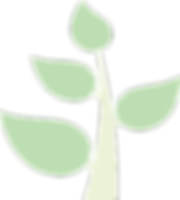 Tree2_v_edited_edited.png