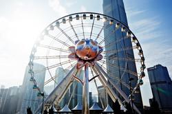 Central_wheel_071.jpg