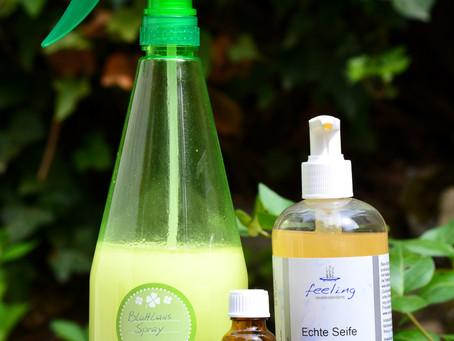 Natürlicher Blattlaus-Spray