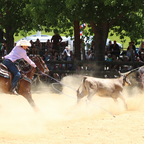Rodeo Events 2020.3rd Jan Oruru Valley Rodeo New Zealand