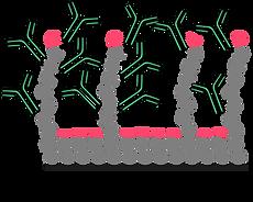 biosensor.png