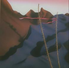 Pima Canyon #2