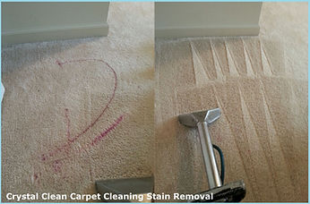 Professional carpet stain removal service by Crystal clean Carpet cleaning
