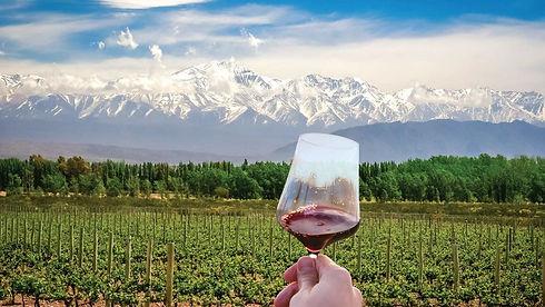 wines_of_argentina_header.jpg