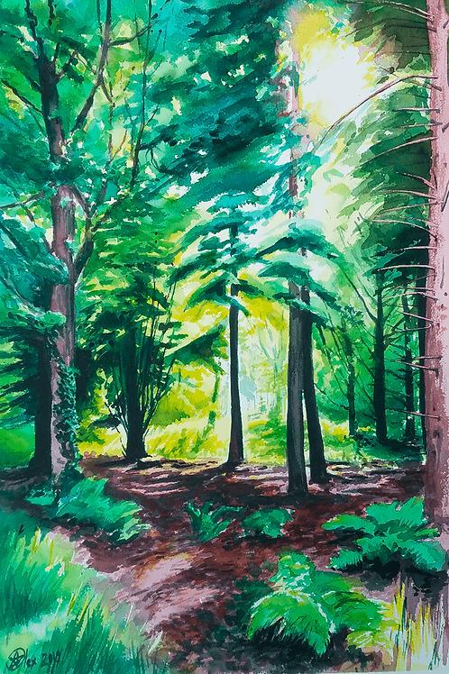 יער בריטי British forest