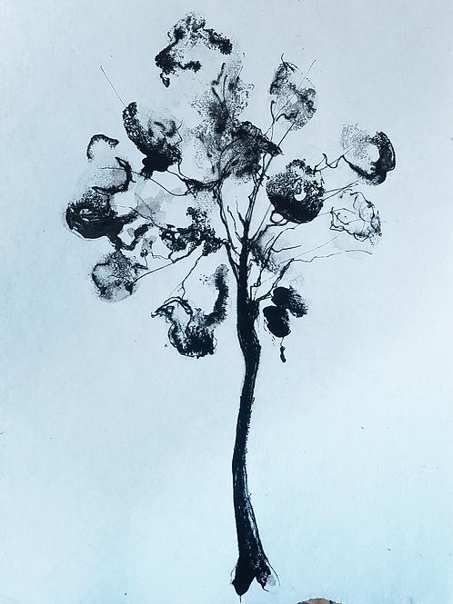 פרח דיו Ink Flower