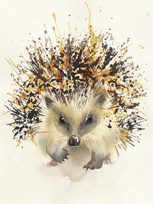 Common Hedgehog