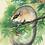 Thumbnail: יונקים קטנים על הדפסים קטנים