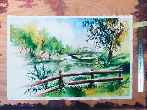 פארק הירקון Yarkon Park
