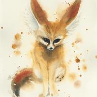 Fennek Fox