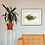 Thumbnail: Fire Salamandra - 40X30cm print