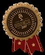 Medalha_BRONZE 2017.png