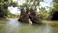 cave tube river rock 1.JPG