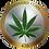 Thumbnail: Cannabiscoin CANN Blockchain - 4,912 GB - 20210920_0536am UTC-3