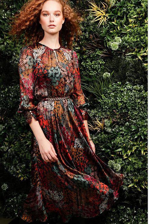 Sacha Drake Fleurot Midi dress