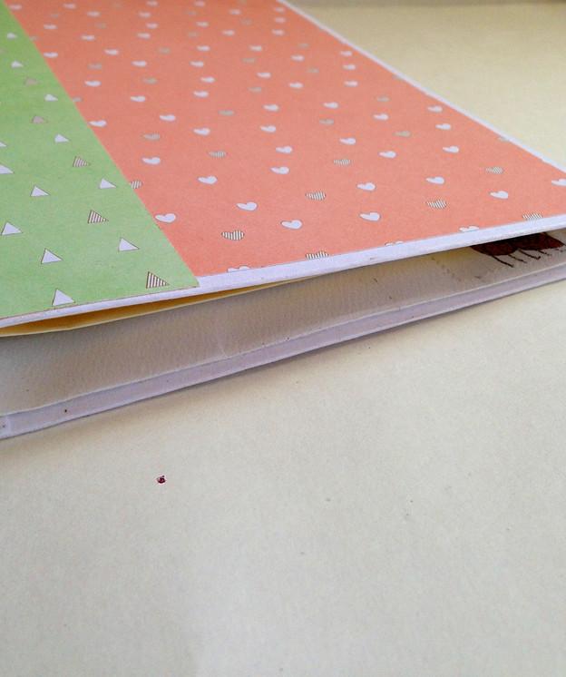 Scrappy Wednesday:  Scrap Envelope Scrap Book