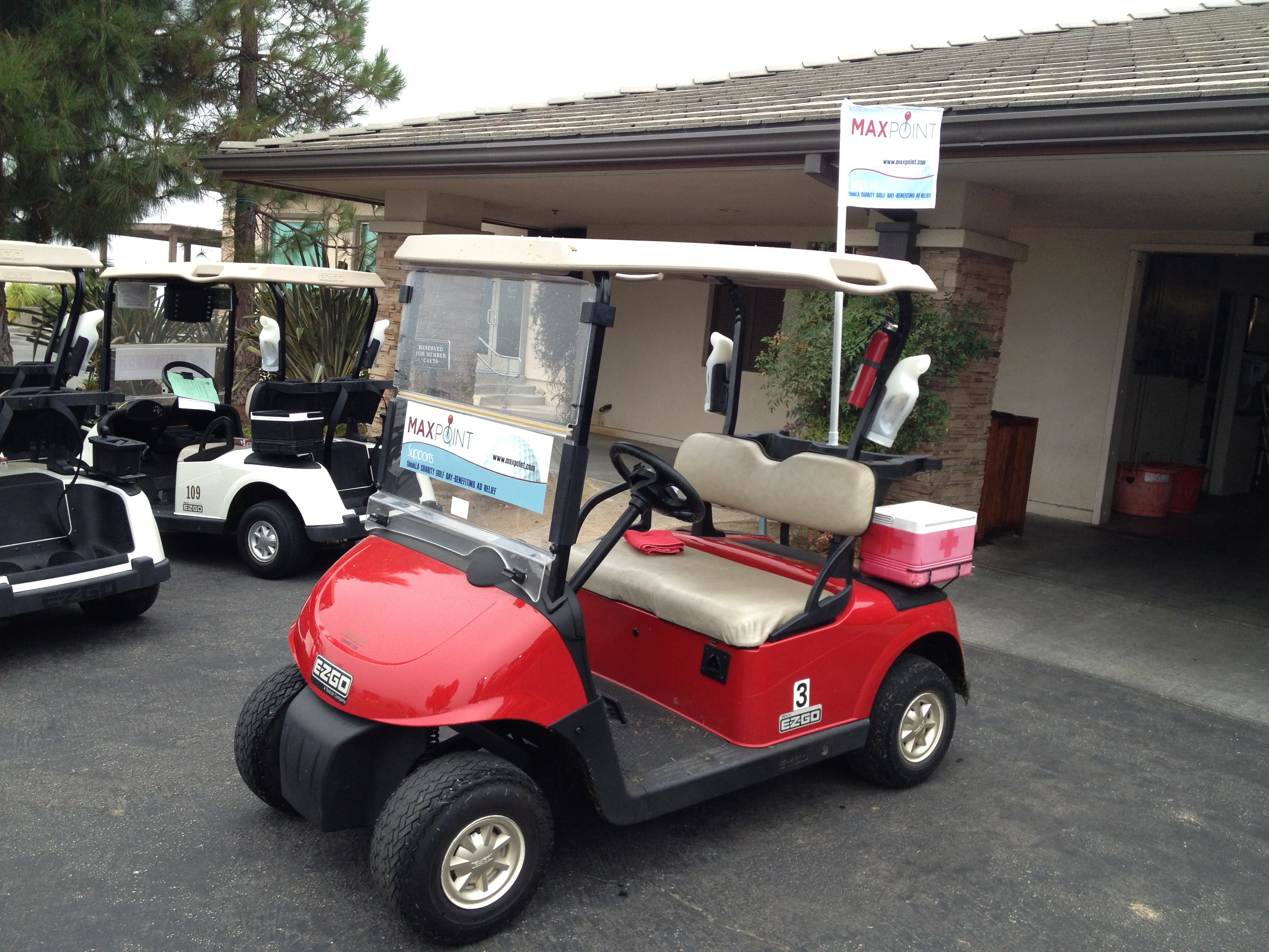 Golf Cart Decal and Flag