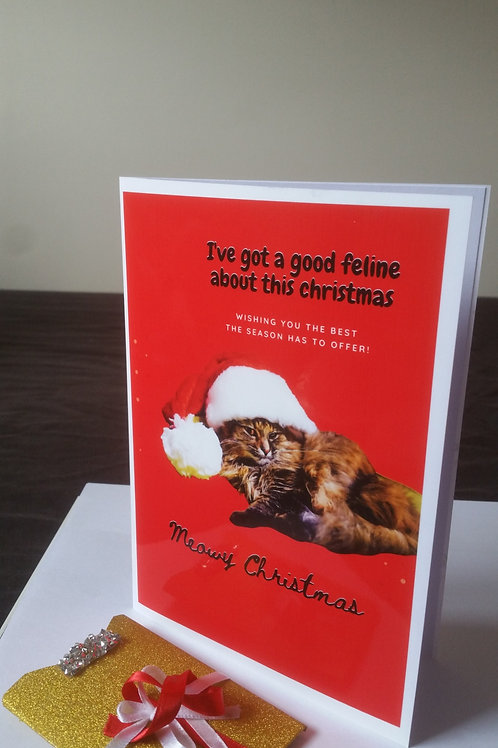 funny meowy Christmas card with gift card holder, gift ideas