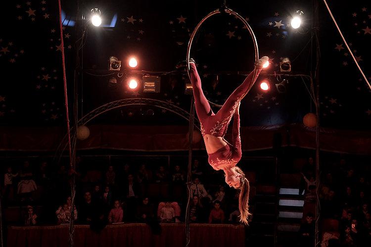 Circus_0955jpg.jpg