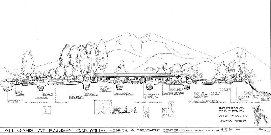 Water catchment for landscape irrigation