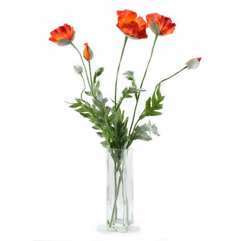 Silk poppies in square vase silk artificial flower arrangement silk poppies in square vase poppies are a nice flower to have indoors throughout the year although their vase life can mightylinksfo