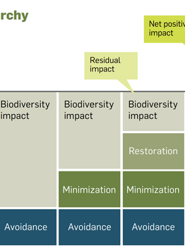 Environmental Impact Assessments (EIA) and the Response of Landscape Architects