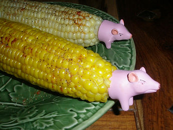 Corn on the Cob 4 Ways to Yummy Cooking Kids Children Families Whidbey Island