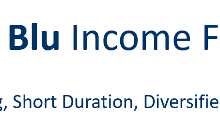 Announcement - The Blu Income Fund's One Year Anniversary