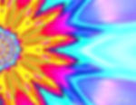 pizap.com13829750436843_bewerkt.jpg
