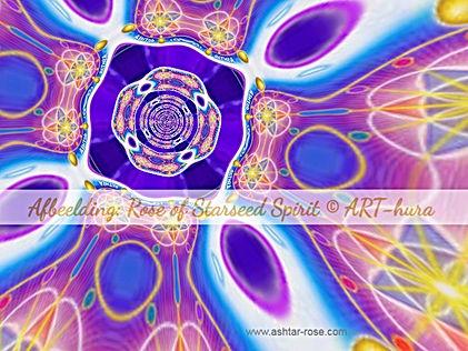Rose of Starseed Spirit © Arthura Hector