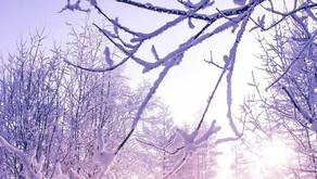 Bijzondere Winterzonnewende 2019: Zon raakt aarde diep via het derde (3-3-3) portaal