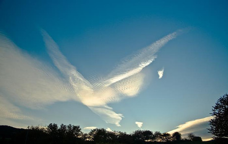 Engel of EAGLE