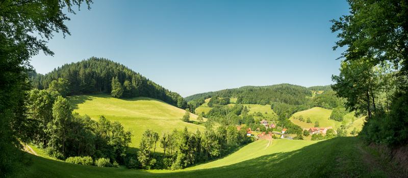 Wiesensteig | Schwarzwald
