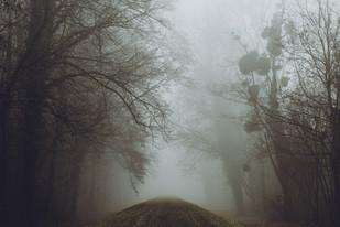 Misty Days