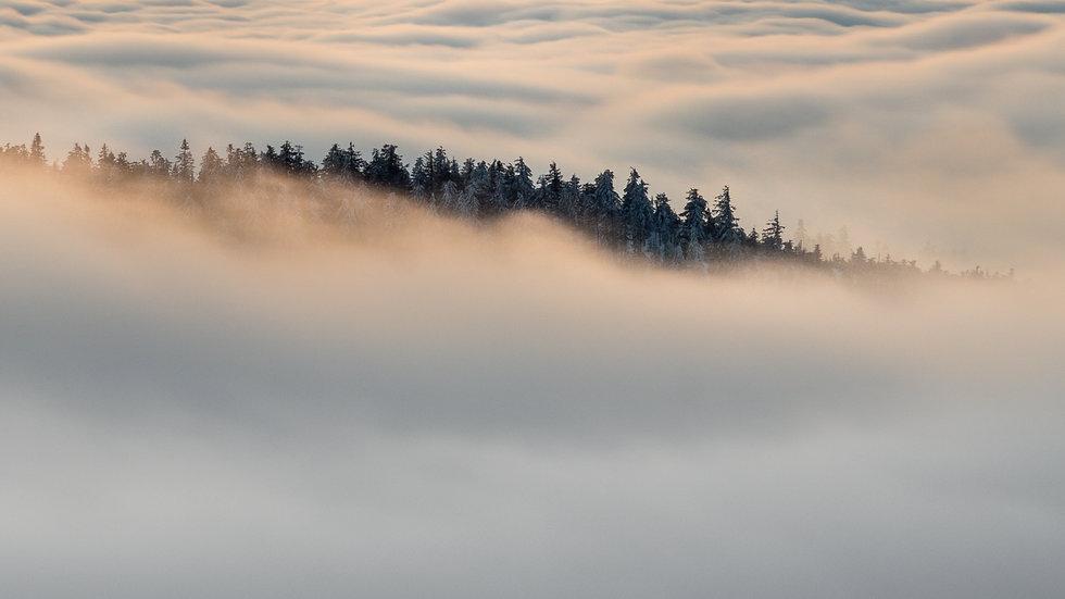 Sven Scheffel Fotografie